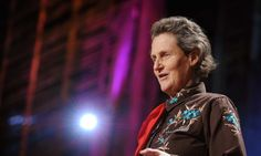 """Temple Grandin, diagnosed with autism as a child, talks about how her mind works -- sharing her ability to """"think in pictures,"""" which helps her solve problems that neurotypical brains might miss. She makes the case that the world needs people on the autism spectrum: visual thinkers, pattern thinkers, verbal thinkers, and all kinds of smart geeky kids."""