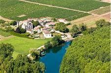 03 - En la región que rodea al río Charente en Francia, se cultivan unas uvas blancas especiales debido al suelo muy rico en yeso, que nunca han dado un buen vino, sin embargo se produce con ellas el mejor cognac del mundo, especialmente en el pueblito llamado Cognac, del que le viene el nombre.