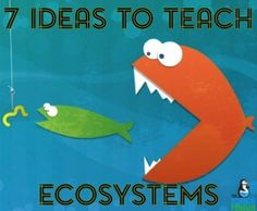 7 of My FAVORITE Ideas to Teach Ecosystems, Food Chains, and Food Webs to…