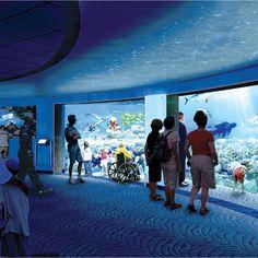 Baltimore S National Aquarium Wows With 12 5 Million Shark Exhibit