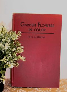 GARDEN FLOWERS in COLOR    by G. A. Stevens by BunnysLuck on Etsy