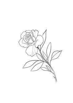 Lotus Flower, Tattoos, Flowers, Tatuajes, Tattoo, Royal Icing Flowers, Lotus Flowers, Flower, Florals