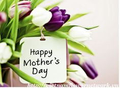 If you want your mother to see a Mother's day flowers with a greeting card from you all have to do is fill in the form on our website: http://vietnamflowernetwork.vn and the gift delivered to their door. We also help you celebrate other occasions including: birthdays, wedding, anniversaries...
