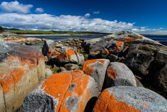 The Bay of Fires in Tasmania needs few words. Enjoy this visual tour of our morning spent there via our 10 photos Australia Living, Australia Travel, The Places Youll Go, Places To See, Travel Around The World, Around The Worlds, Tasmania Travel, Belleza Natural, Where To Go
