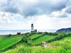 Heading to Batanes? Here's a travel guide and sample itinerary for your South Batan tour. It is located in Batan Island, the second biggest island in the northernmost province of the Philippines. Travel And Tourism, Travel Guide, Batanes, Big Island, Day Tours, Travel Quotes, Philippines, Scenery, America