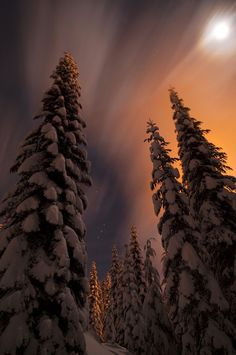 Untitled by Aurora Si Donna Perederic - via: ponderation: - Imgend