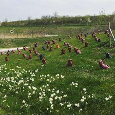 Bald bald wird das Wetter wieder besser. Dann kann man auf der #Landesgartenschau eine Installation von Ottmar #Hoerl bewundern der zahlreiche Folichons aufgestellt hat. Wer weiß wer #Folichon war?  #landesgartenschau2016 #bayreuth #visitbayreuth