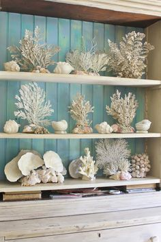 Thanks for coming for a tour of my home to see my summer decorations that are (finally) in place. Right inside the. Beach Cottage Style, Beach Cottage Decor, Coastal Style, Coastal Decor, Coastal Living, Shell Display, Style Deco, Decoration Table, Beach Cottages