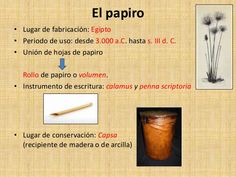 calamus romano - Buscar con Google