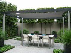 Overkapping en combi schutting hedera en grijze schutting tuin pinterest tuin - Pergola met intrekbaar canvas ...