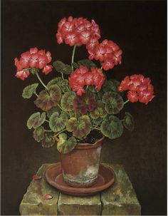 "robert-hadley: "" Jose Escofet - Pink and White Geraniums, gouache on paper, 1990 "" robert-hadley: "" Botanical Flowers, Botanical Illustration, Botanical Prints, Art Floral, Flower Vases, Flower Art, Watercolor Flowers, Watercolor Art, Impressions Botaniques"