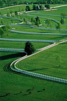 """Aerial View Of Donamire Farms in Kentucky. Love that Kentucky """"blue grass"""" and all of those stunning white fences! Dream Stables, Dream Barn, Horse Stables, Horse Barns, Horse Fencing, Pasture Fencing, Horse Tack Rooms, Kentucky Horse Farms, Casas Country"""