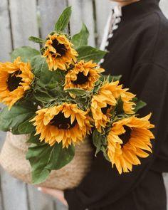 Cu soarele in cos 🌻🧺 Cos, Floral Design, Bouquet, Bride, Garden, Flowers, Wedding Bride, Garten, Bridal