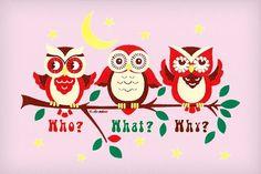 Who What Why Owls T-Shirt, via Neatorama