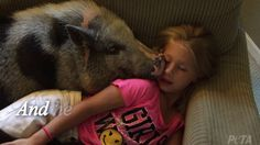 Abused Pig Cuddling With His New Family Will Give You All the Feels