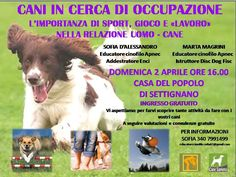 """Che fare con i """"Cani in cerca di occupazione""""? Ce lo spiegano Sofia D'Alessandro e Marta Magrini :http://www.qualazampa.news/event/che-fare-con-i-cani-in-cerca-di-occupazione-ce-lo-spiegano-sofia-dalessandro-e-marta-magrini/"""