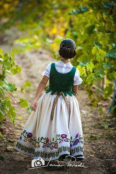 Fotografias de componentes de la Fiesta de la Vendimia Requena y comarca. El traje que lucen las damas y comisionados de la Fiesta de la Vendimia
