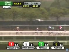 Congratulations to Freedom Child and his connections for his amazing win at the Peter Pan Stakes on May 11, 2013 at Belmont!