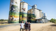 Central NSW boasts an impressive array of visual art. Australian Ballet, Australian Art, Street Mural, Street Art, Bridge Painting, Land Of Oz, Open Art, Steel Sculpture, Garden Features