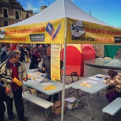 A la @FiradelGall recollint vots com a @ancgelida en acció @assemblea #Penedès a #Vilafranca #FiradelGall #CapitaldelVi