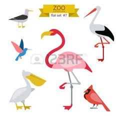 cartoon flamingo: Flat design vector birds icon set. Seagull, hummingbird, flamingo, stork, pelicans. Flat zoo children cartoon collection.