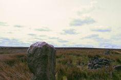 Thornton Moor photo by RG