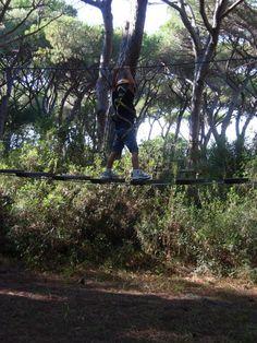 Piccoli tarzan crescono arrampicandosi tra gli alberi