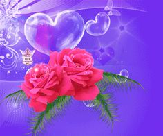 418623.gif (300×250) Happy February, Gifs, Hearts And Roses, Birth Flowers, Some Pictures, Beautiful Roses, Valentines, Joy, Pretty
