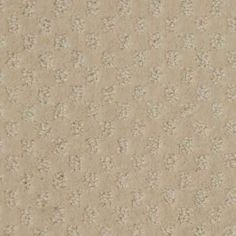 ALCOVA, Crescent, Pattern PetProtect® Carpet - STAINMASTER®