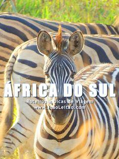 Visitar África do Sul: roteiros, guia de melhores destinos para viajar, fotos, transportes, alojamento, restaurantes, dicas de viagem e mapas.