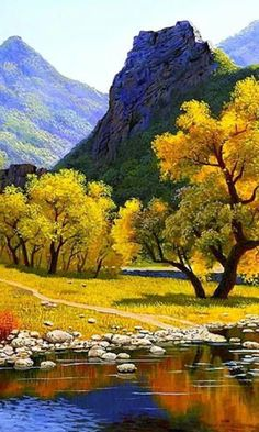 Z pictures of trees, forest pictures, nature pictures, beautiful nature photos, beautiful Scenery Pictures, Nature Pictures, Beautiful Pictures, Photo Scenery, Forest Pictures, Beautiful Nature Wallpaper, Beautiful Landscapes, Beautiful Paintings Of Nature, Beautiful Nature Scenes