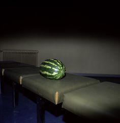 museumuesum: Marnix Goossens Bouquet d'amour, 2006, C-print, 67 x 53cm Chaoot, 2005, C-print, 67 x 53cm Melon, 1997, C-print, 55 x 53cm