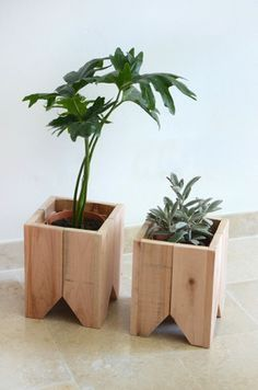 39 Captivating Wood Succulent Planter Ideas Of Unused Wood Succulents are perfect plants for dry gardens and are easy to root and grow. Once you learn how easy it […] Wooden Planters, Diy Planters, Planter Boxes, Planter Ideas, Succulent Planters, Cacti Garden, Wood Projects, Woodworking Projects, Woodworking Beginner