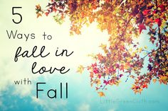 The Top Five Ways to Fall in Love with Fall