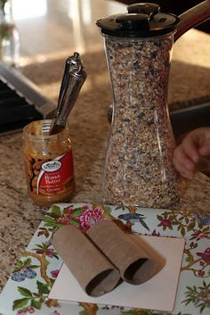 Toilet Paper Roll Crafts For Kids Spring Bird Feeders