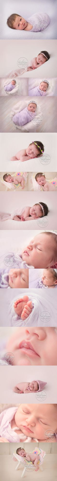 Baby D's classic newborn girl session in soft pink and lavender by Boston Newborn Photographer Heidi Hope.