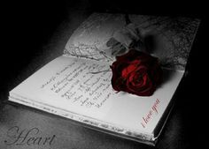 Gothic Book Of Love - book, dark, gothic, rose