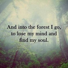 These camping memes are motivational, thought-provoking, quite a few will make you chuckle. These camping memes will make you want to go camping! Forest Quotes, Nature Quotes, Quotes About Nature, Positive Quotes, Motivational Quotes, Inspirational Quotes, Positive Thoughts, Funny Quotes About Life, Funny Sayings