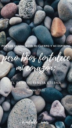 Reformation in Latin America, Roger Smalling, Leadership Training, Grace Gods Love Quotes, Quotes About God, Biblical Verses, Scriptures, God Bless You, Jesus Loves You, God First, Gods Promises, God Jesus
