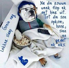 Good Night Wishes, Good Night Sweet Dreams, Evening Greetings, Goeie Nag, Daily Thoughts, Sleep Tight, True Words, French Bulldog, Wees
