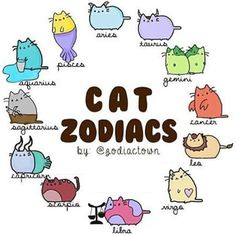 Read Pusheen from the story Zodiac scenarios by with 292 reads. Is awesome 😜🦄 Cute Animal Drawings, Kawaii Drawings, Cute Drawings, Zodiac Art, Zodiac Signs, Zodiac Symbols, Chat Kawaii, Pusheen Love, Zodiac Sign Fashion
