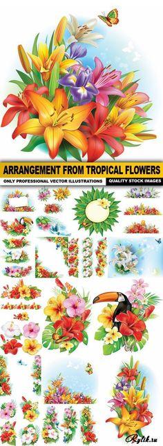 Тропические цветы - роскошные векторные рисунки