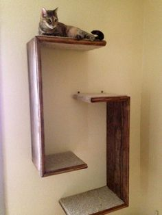 Cats Toys Ideas - Salto - wall mounted cat furniture and cat scratchers - Ideal toys for small cats Diy Cat Tree, Small Cat Tree, Ideal Toys, Cat Playground, Playground Design, Cat Room, Cat Condo, Pet Furniture, Furniture Removal