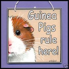 NEW GUINEA PIG RULE PAINTING HOUSE LAMINATED SIGN BY SUZANNE LE GOOD