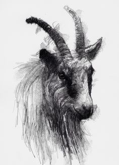 Animal Sketches, Animal Drawings, Cute Drawings, Drawing Sketches, Satan Drawing, Goat Art, Satanic Art, Scary Art, Sketch A Day