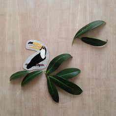 Et voilà.... Je suis heureuse de vous présenter ma nouvelle broche un toucan nommé KLEO  #droledoiseau  Ce modèle est un des plus long à réaliser  Beaucoup de détails.  Je vous souhaite à tous une belle soirée   #photooftheday #broche #brooch #faitmain #broderie #broderiemain #handmade #embroidery #oiseau #toucan #feuilles #creationparisi #parisianais #createurfrancais #petitesséries #bijoux #bijouxbrodés #piecesuniques #newcollection #newbrooch #summer #nature #madeinparis  Brodé main sur…