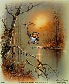 andres orpinas   Lot of 50 Art Prints By Andres Orpinas Ducks in Flight III BI822 Size ...