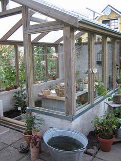 Lugnets trädgård: växthuset