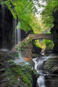 in World's Best Places to Visit. in World's Best Places to Visit. in World's Best Places to Visit. Beautiful Waterfalls, Beautiful Landscapes, State Parks, The Places Youll Go, Places To Visit, Beautiful World, Beautiful Places, Watkins Glen State Park, Belle Photo