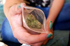 Marijuana Strains That Women Want.Buy Marijuana/ Buy weed /Buy cannabis and marijuana products.You have been thinking of where to get the oldest and the best marijuana strains as well as concentrates and edibles, and place your order to get in shipped wi Medical Cannabis, Cannabis Oil, Cannabis Growing, Weed Pictures, Hemp Oil, Herbs, How To Get, Marijuana Facts, Medicine